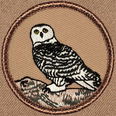Starry night owl patrol patch.